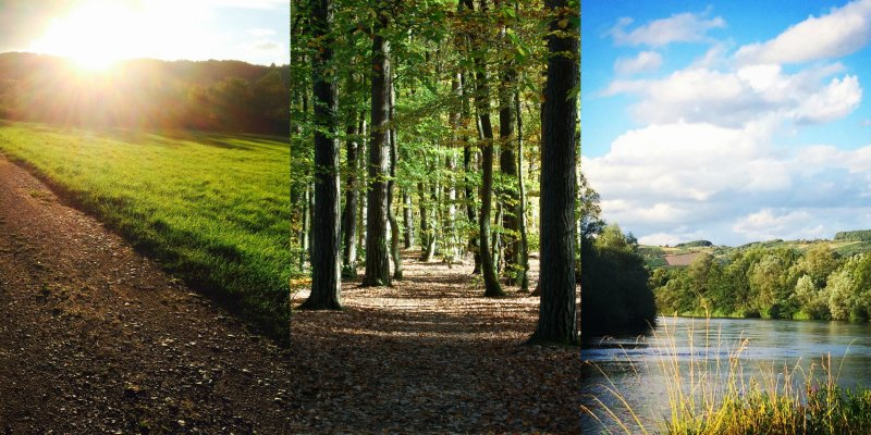 Retreat Collage Natur